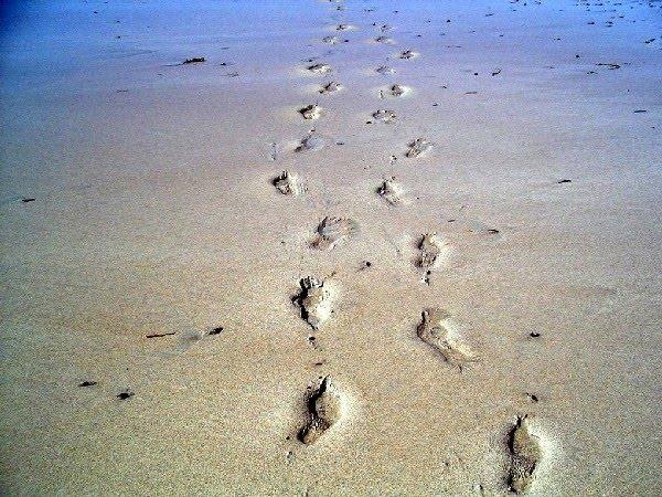 Escritura De La Mano Te Amo En La Arena Y La Playa Imagen: La Vida Del Reves - Part 2